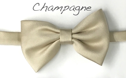 Champagne Satin bow