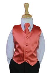 Persimmon Vest and tie
