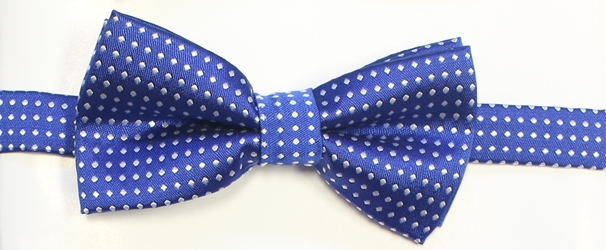 Royal polka Bow tie 119